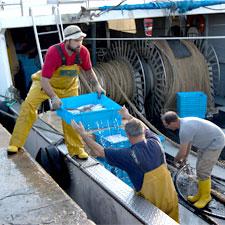Pescadors de la Barceloneta